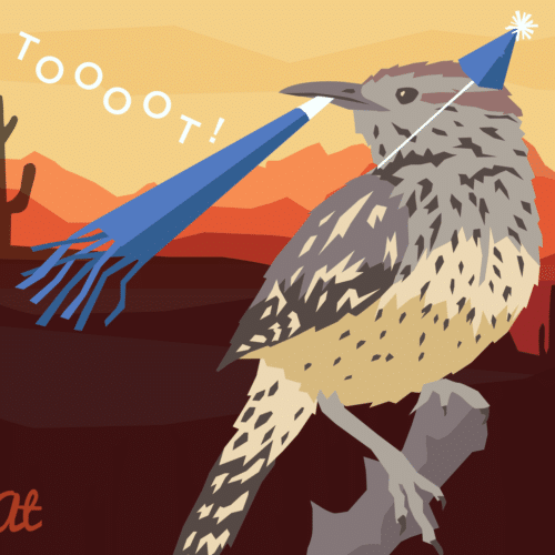 Cactus wren illustration.