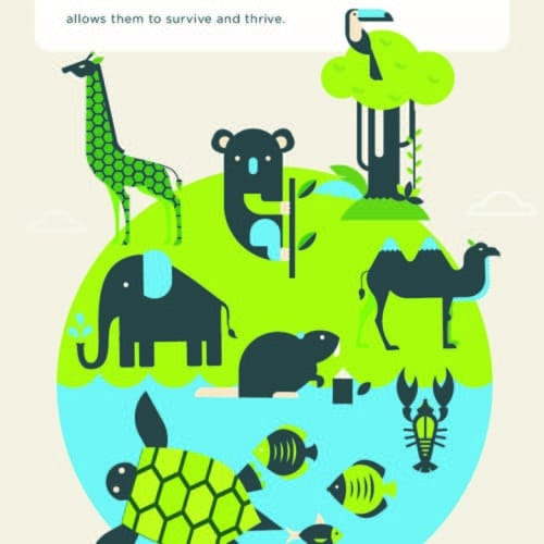 Thumbnail of wildlife infographic.