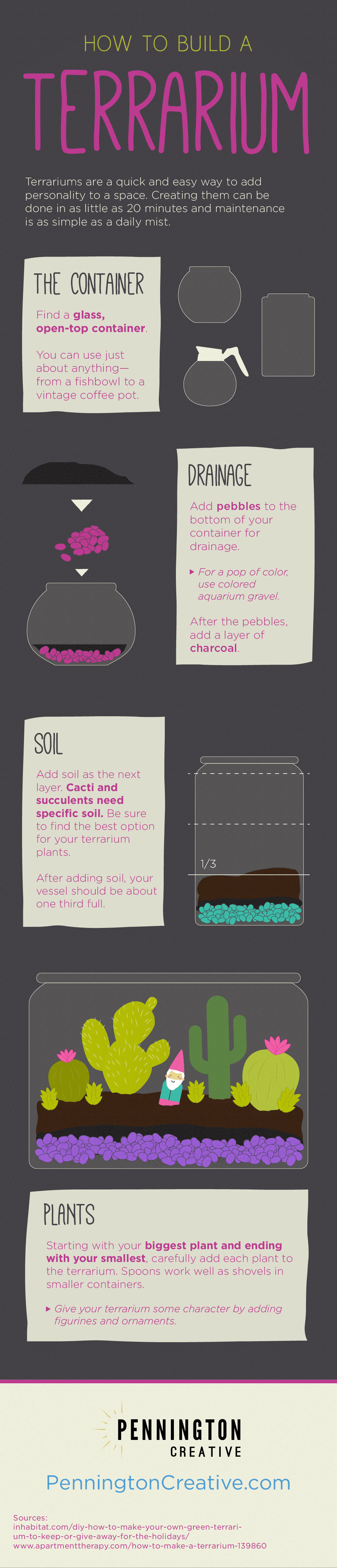 How to Build a Terrarium Infographic