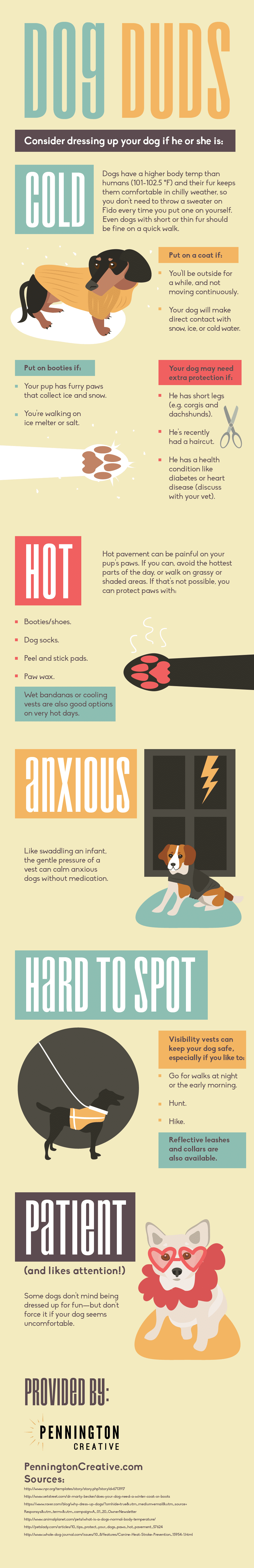 Dog Duds Infographic
