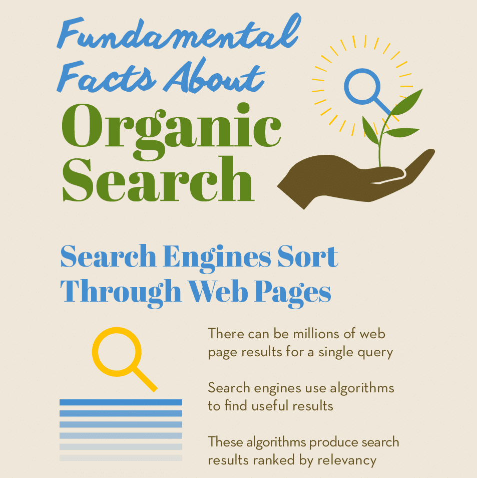 Thumbnail preview of infographic about organic search results.