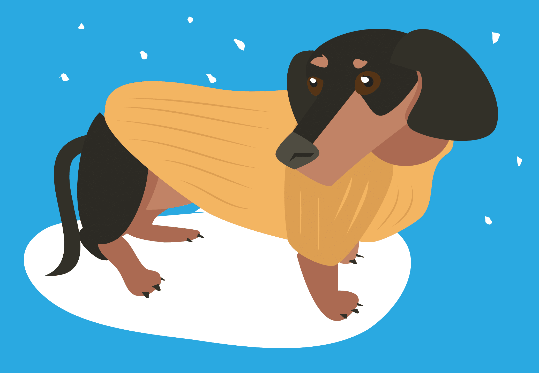 Illustration of a dachshund dog wearing a sweater.