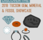 Thumbnail preview of Tucson gem show infographic.
