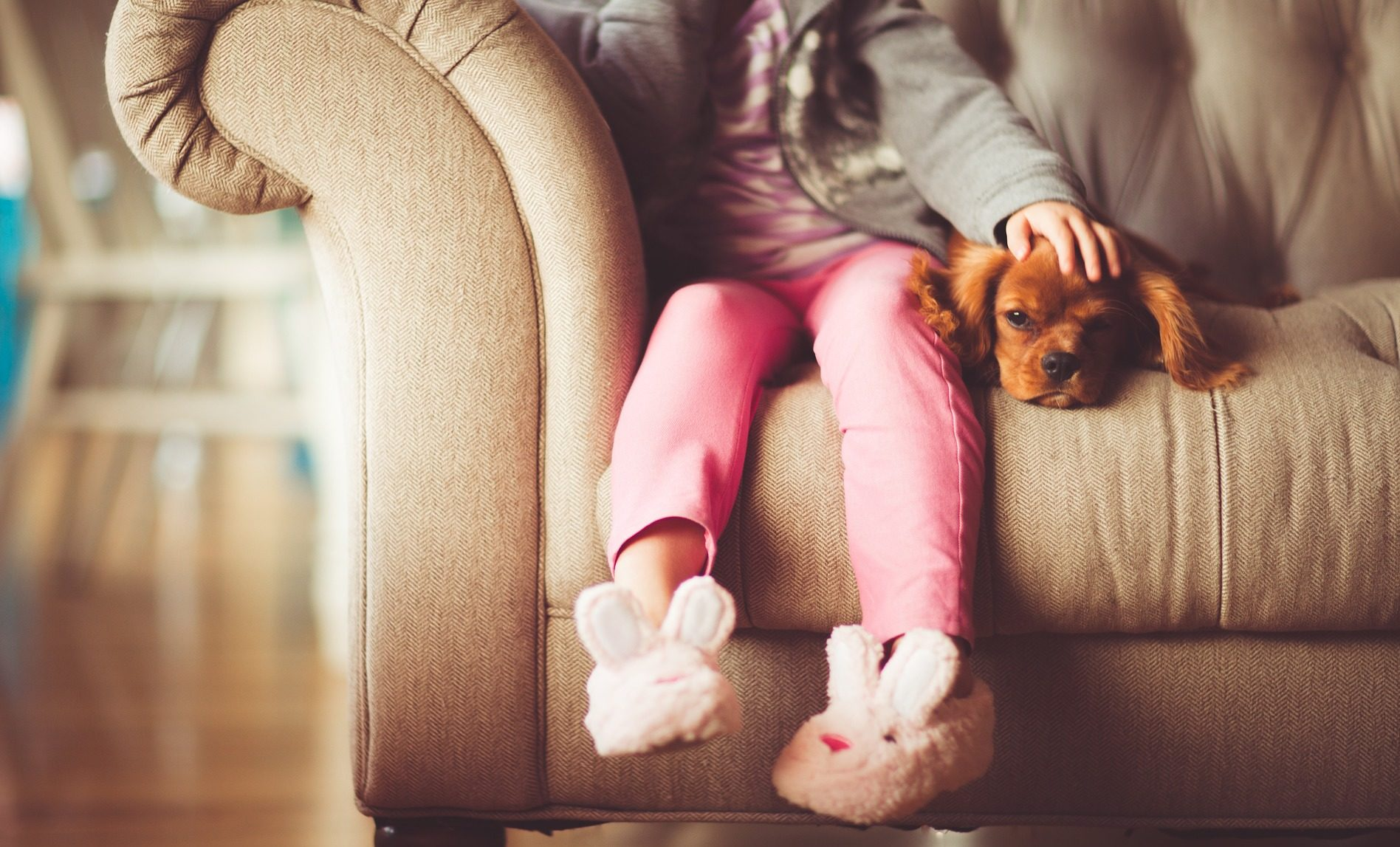 Photo of a girl wearing bunny slippers sitting on a couch with a Cavalier King Charles Spaniel puppy.